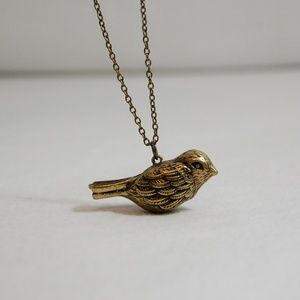 Jewelry - NWOT: Antiqued Brass Bird Whistle Necklace
